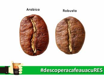 Cafea RES - Arabica si Robusta
